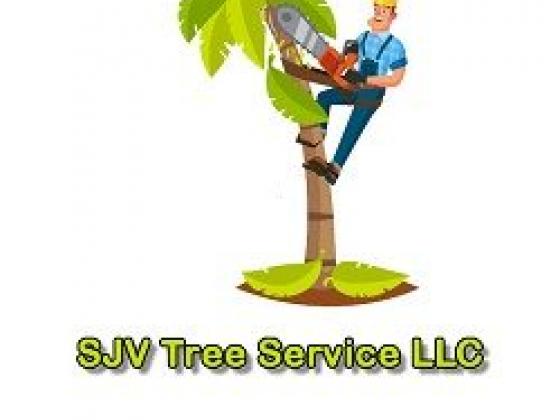 SJV Tree Service LLC