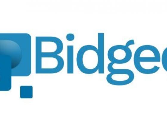 Bidgee Digital